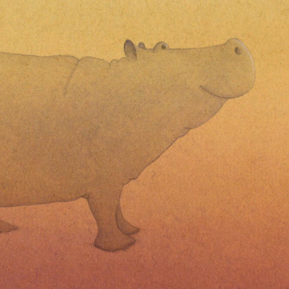 whos-shy-hippo.jpg