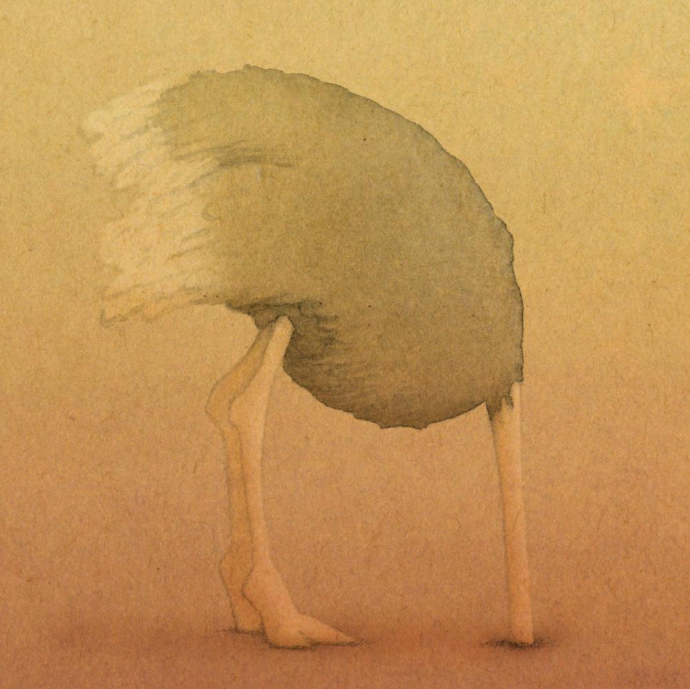 whos-shy-ostrich.jpg