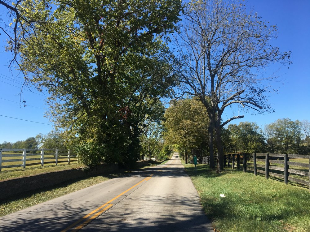 Iron Works Road, Paris, Kentucky will take your breath away. We drove around in 75 degree weather, country tunes blasting, windows down, hair blowing in the wind. THE FEELZ WERE REAL.