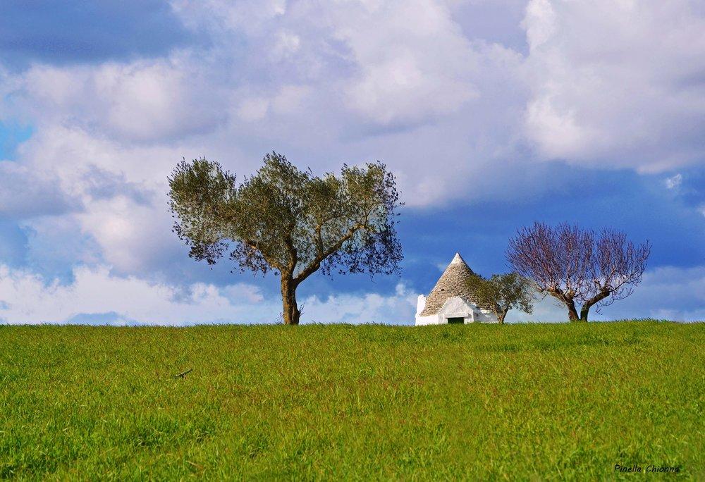 landscape-1307512_1920.jpg