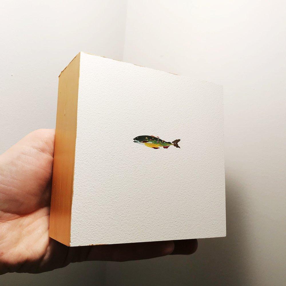 lil fish.JPG