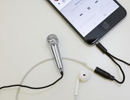 mini microphone.jpg