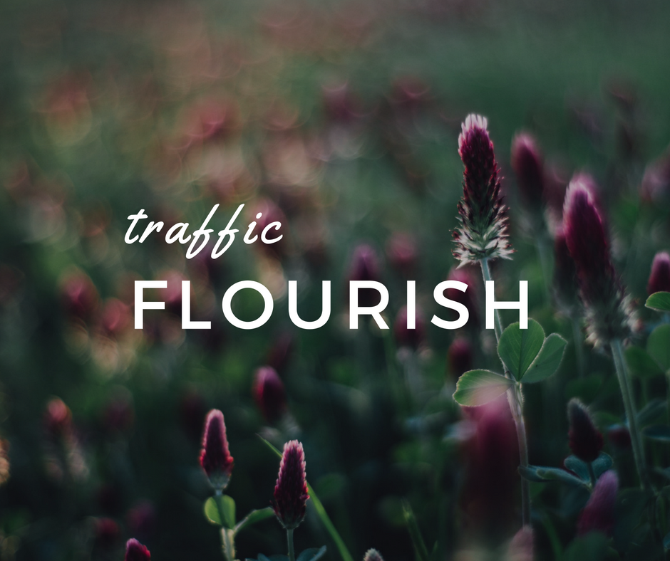 seo-program-traffic-flourish