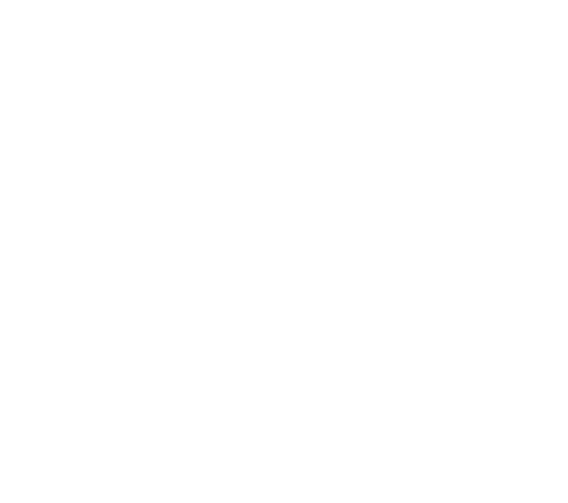 Guided Motion