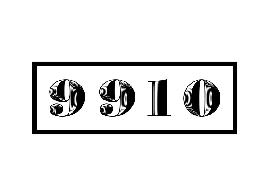 9910 copy.jpg