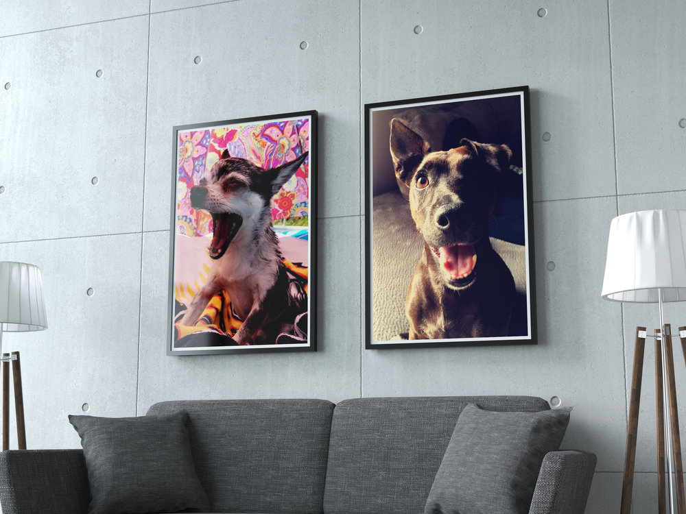 upload your own photo - Wall Prints