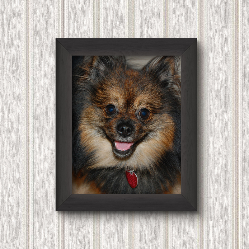 Upload Your Own Photo! - Framed Wall Prints
