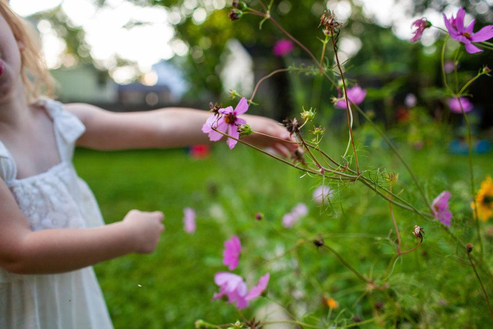 maine-newborn-family-photographer-stepheneycollinsphotography -73.jpg