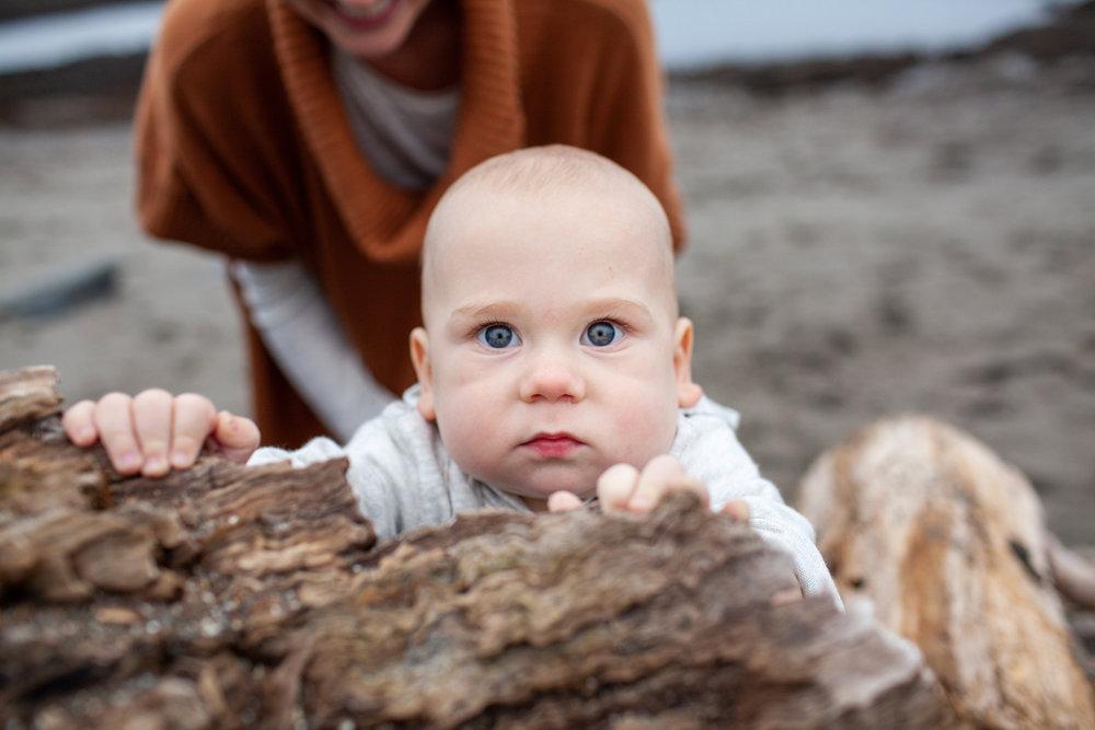 maine-family-photographer-stepheney-collins-photography -67.jpg