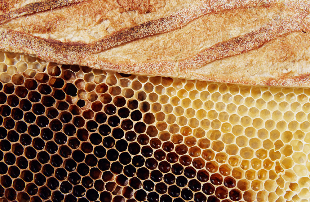 Bread+Honey1.jpg