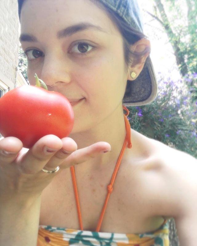 First tomato of the season! 🍅🌱
