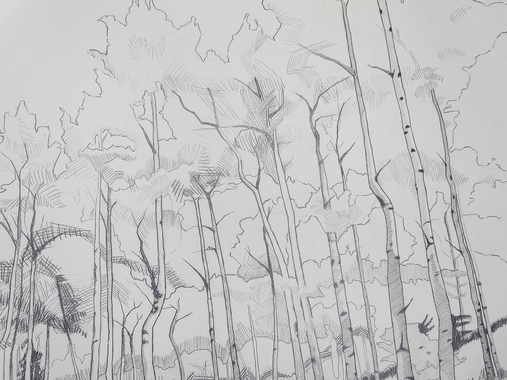 "detail of ""Aspen Grove"" by Krista Dedrick Lai"