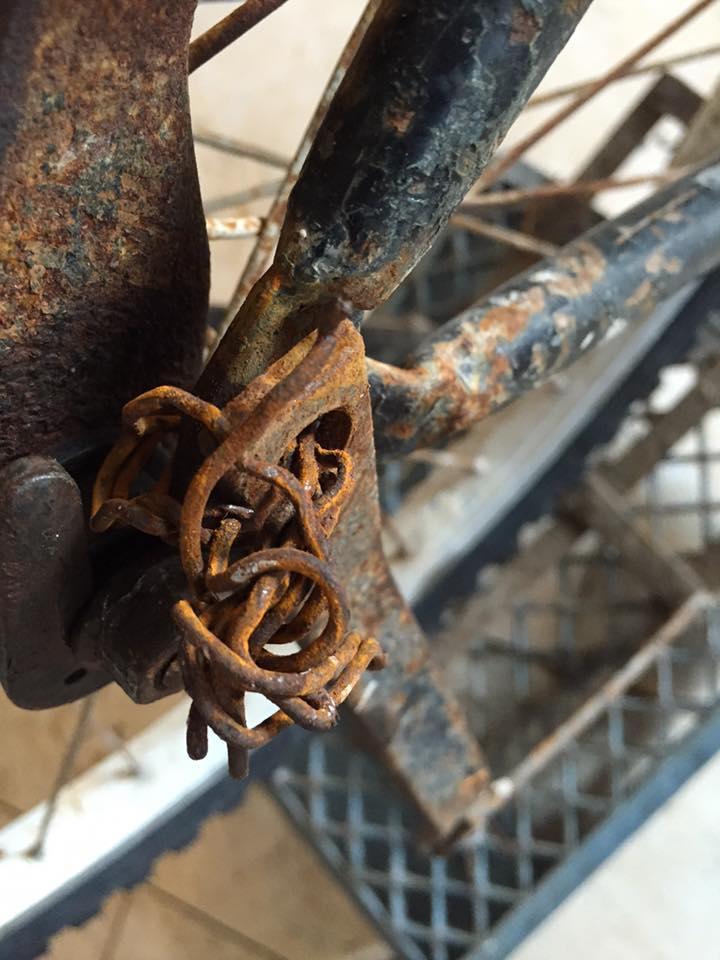 high gear mexico 4.jpg