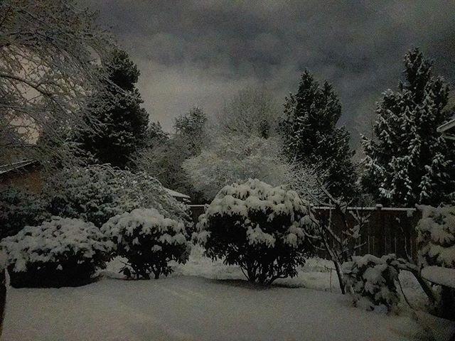 #winter #wonderland #pnw