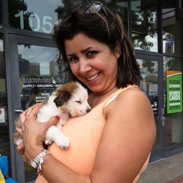 This little furry friend found a forever home....❤️🐶❤️🐶❤️ #tragictomagic #tragictomagicfoundation #adoption #adopt #adoptdontshop #supportyourlocalrescue #saveanimals #foster #fosteracat #fosteradog #earthwisepetsupply #sandiego #california #whosavedwho #foreverhome