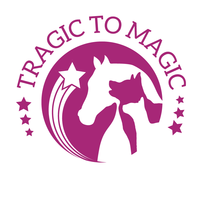 Tragic to Magic