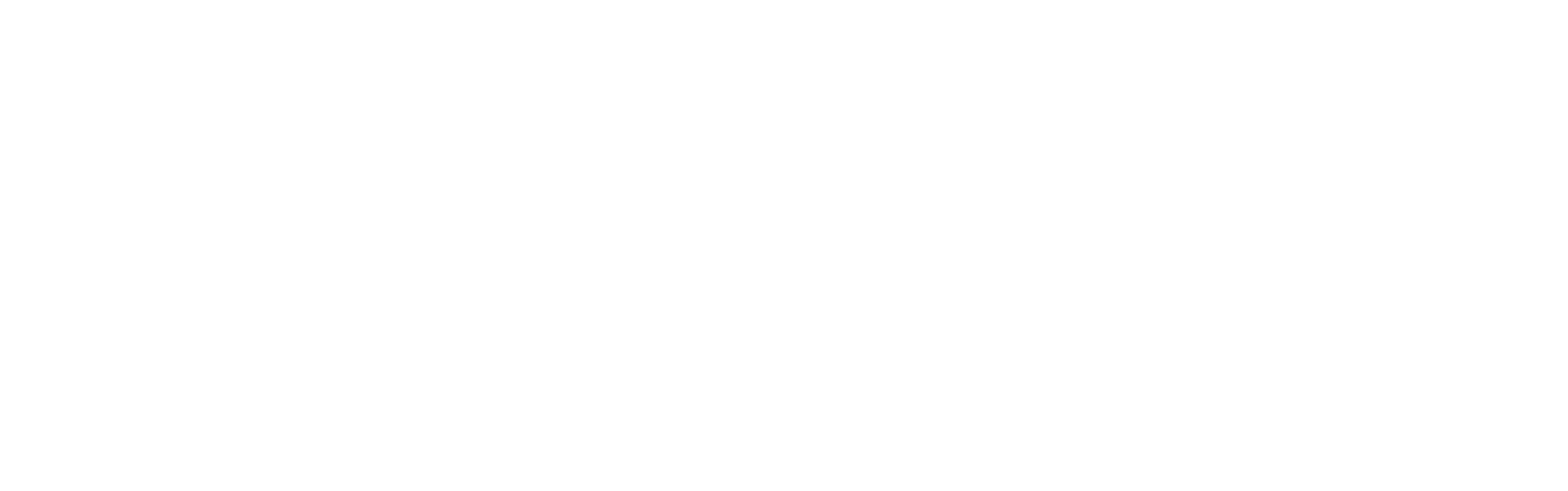Dynamic Auction Group