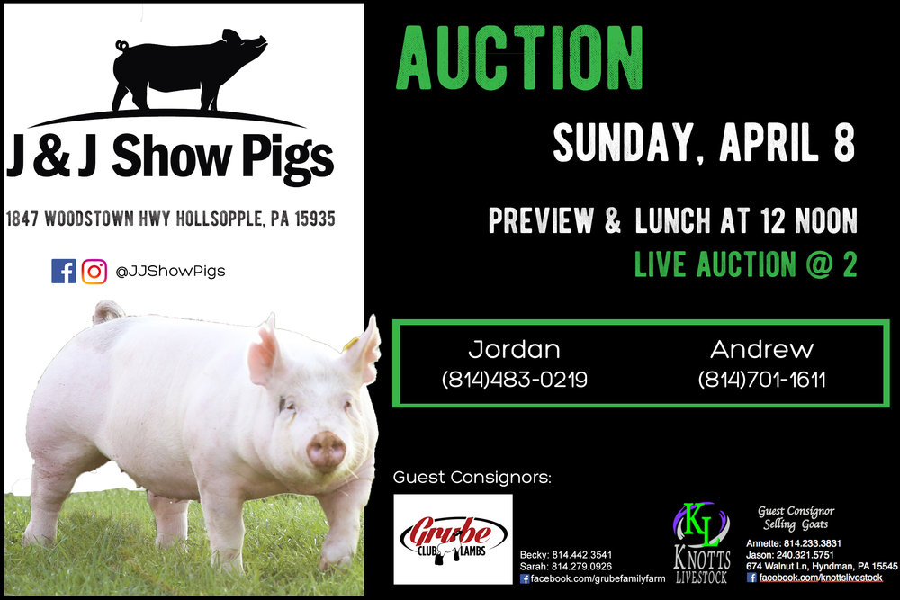 SOLD - J&J SHOW PIGS SPRING AUCTION
