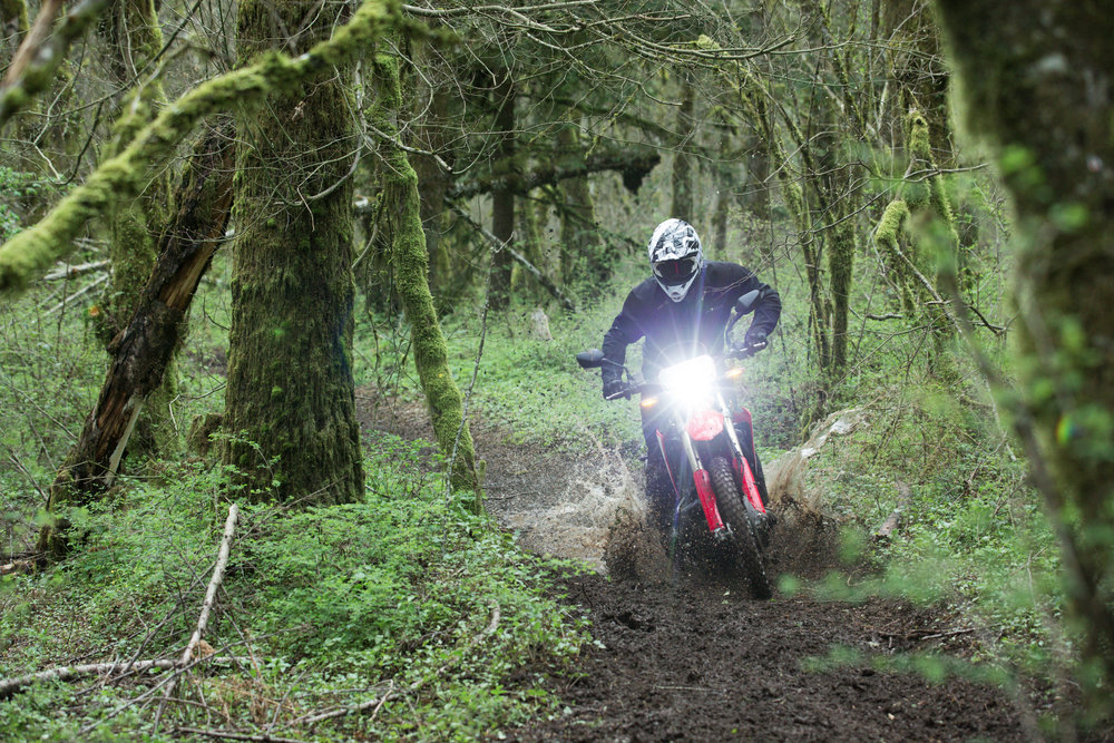 19 Honda CRF450L_Action_3 copy.jpg