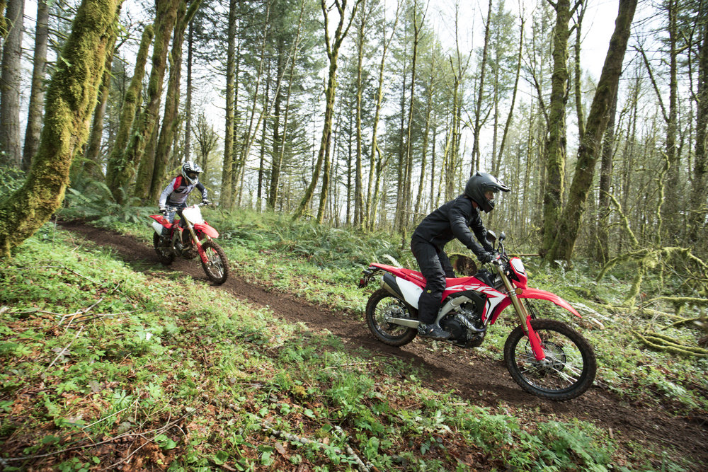 19 Honda CRF450L_Action_4 copy.jpg