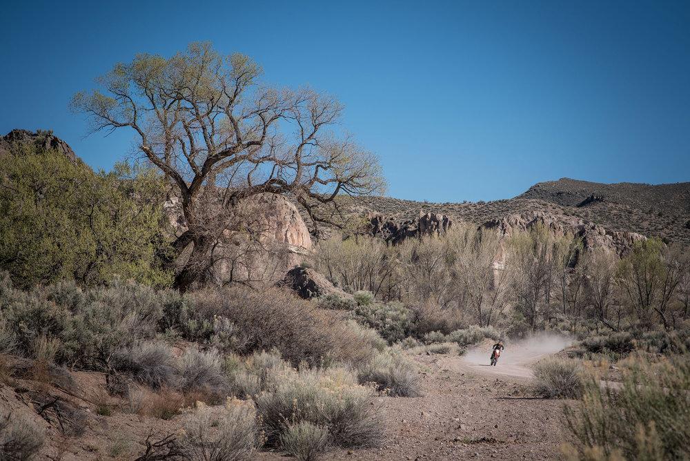 Nevada200-2018-Cudby0049.JPG
