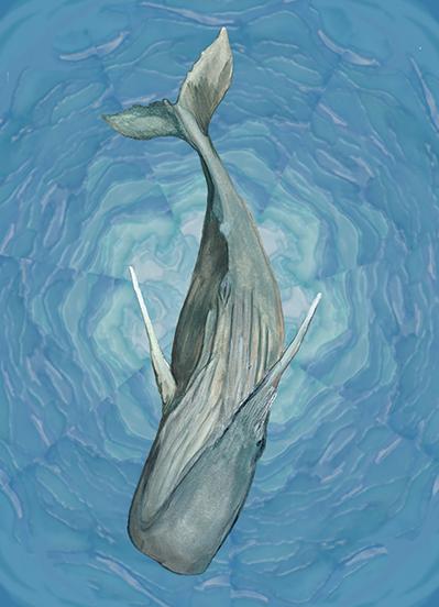 12_whale song_THUMB.jpg