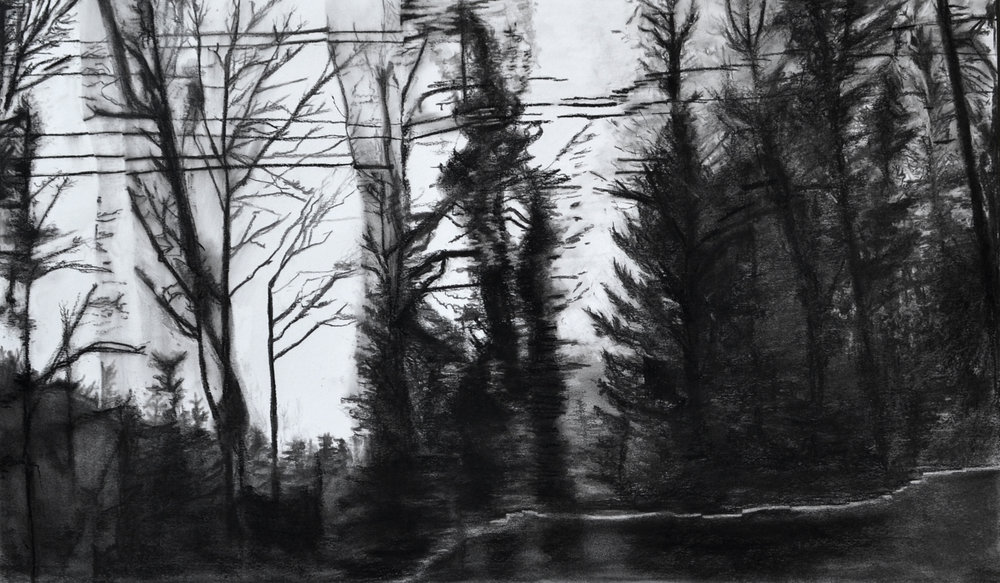 Skyline #2 Shelley Chamberlin, 2016 Charcoal on paper
