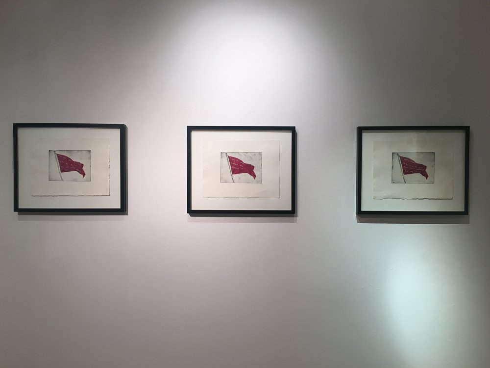 Red Flag Series Shelley Chamberlin, 2015 Install View