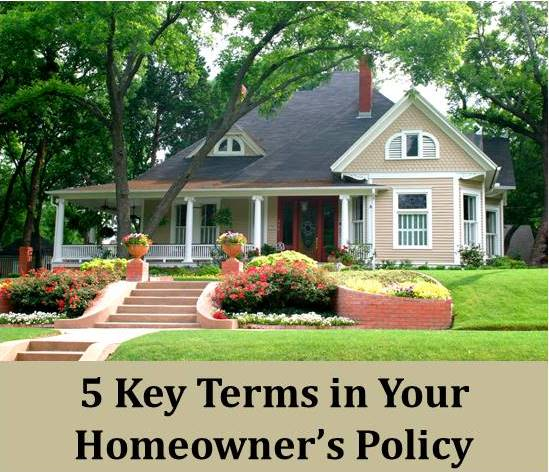 DOWNLOAD OUR FREE GUIDE TO HOMEOWNER'S POLICY