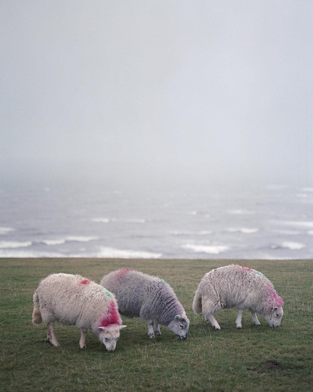 Wales_045_Rhossili_Bay.jpg