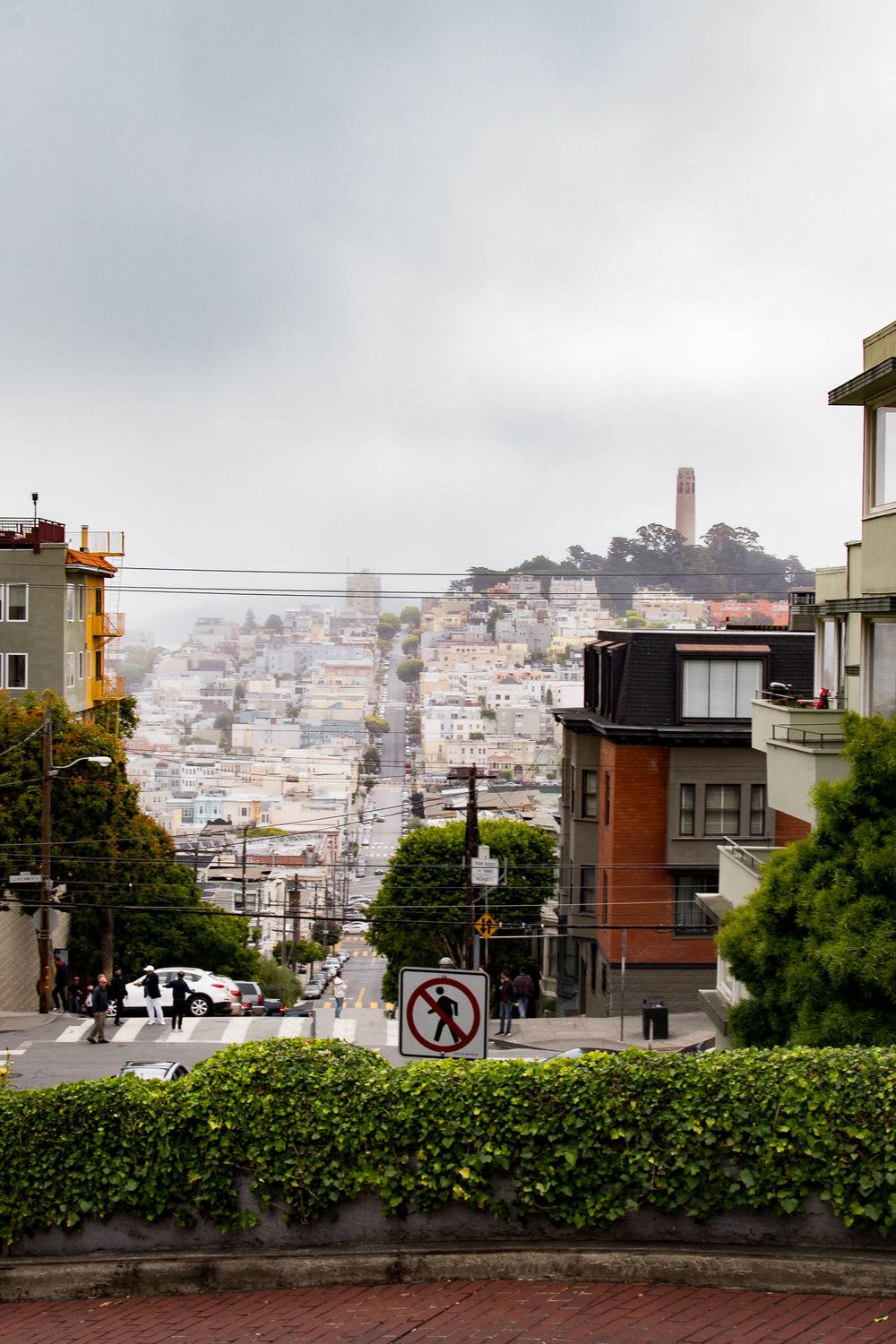 Taken from the curvy part of Lombard St, you can see Coyt Tower (our first stop after leaving the hotel.)