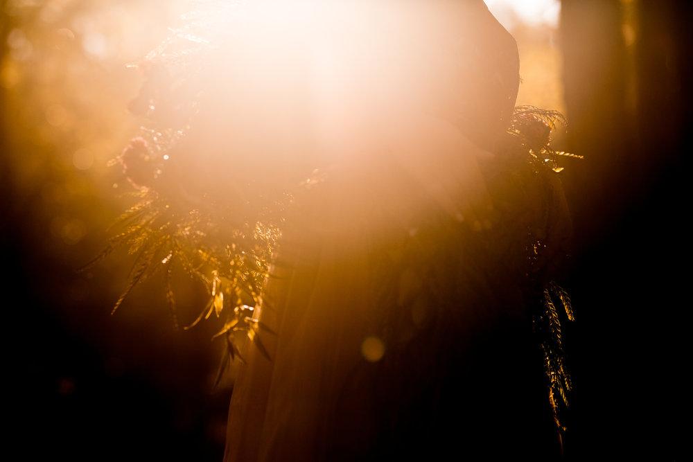 Christina Paz Photography - Ella Styled Shoot - Woods -5.jpg