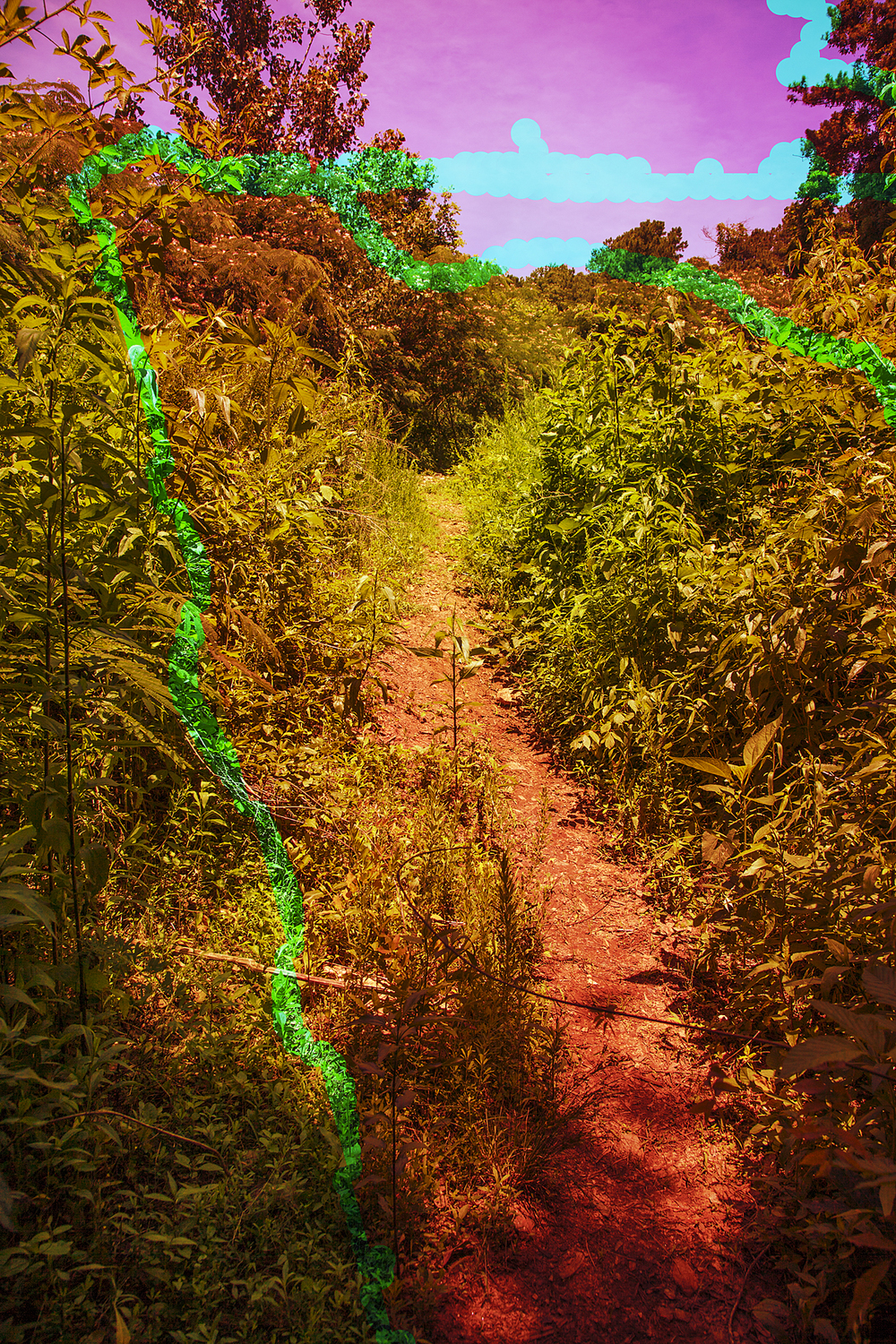 Color Burn Path, 2016