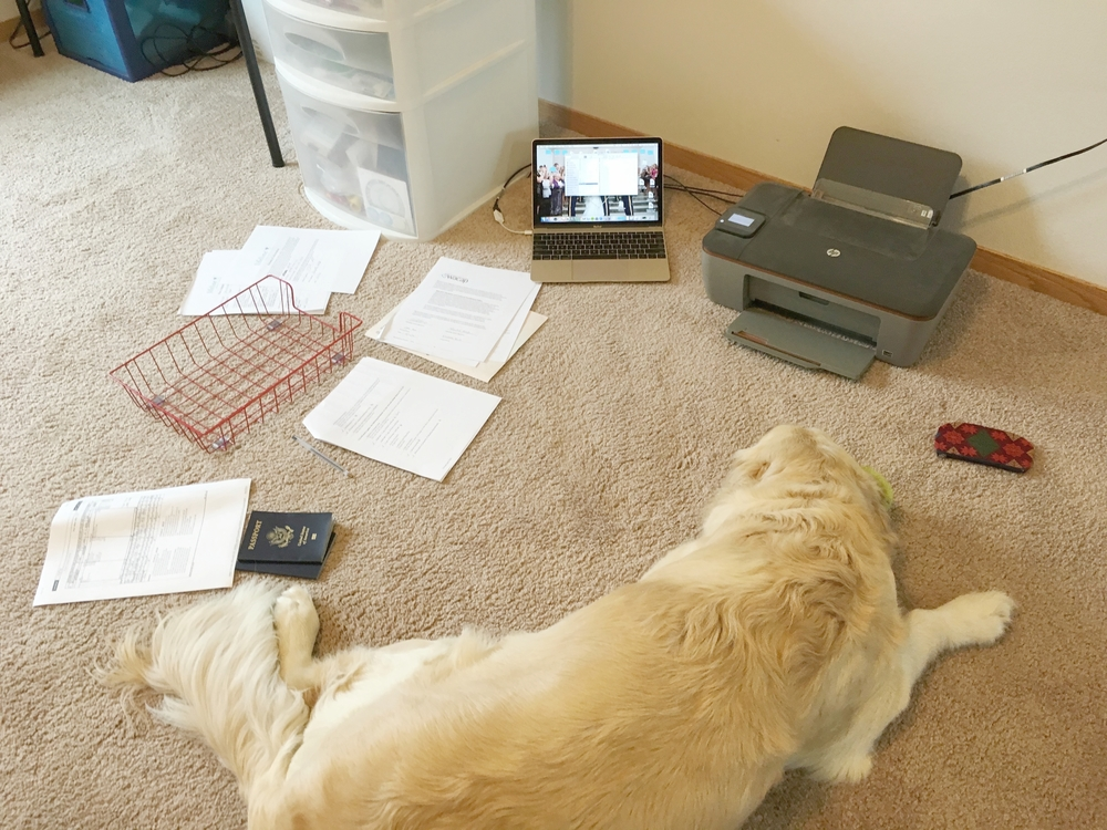 Buddy helped me scan in all our homestudy paperwork...He's quite the assistant!