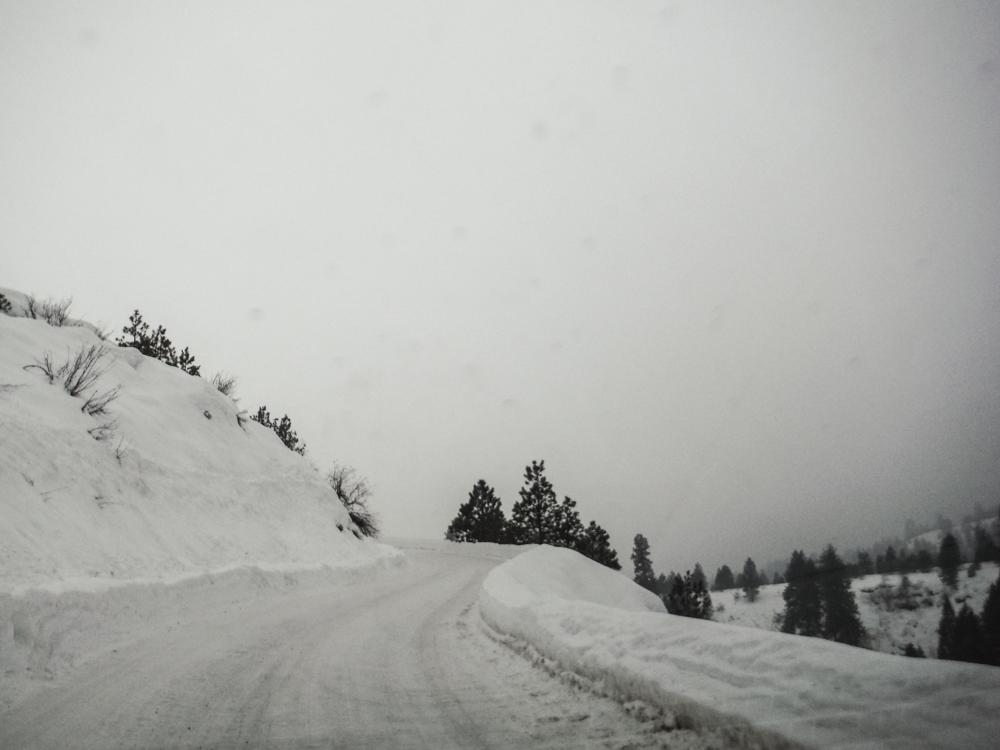burke_2017_snow-9.jpg