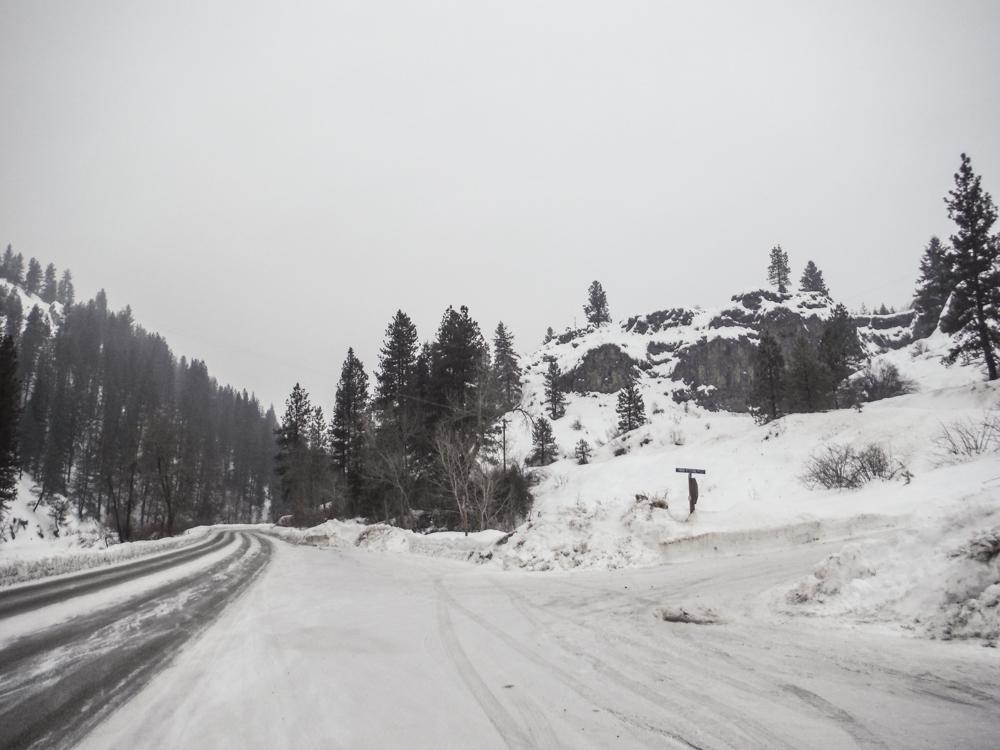 burke_2017_snow-8.jpg