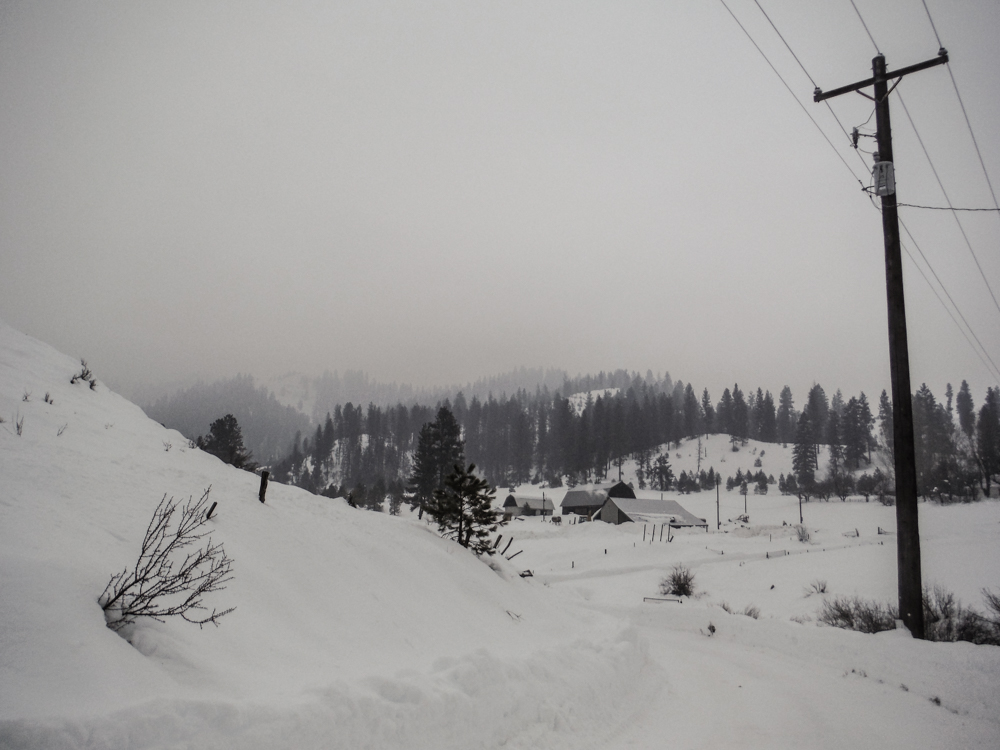 burke_2017_snow-11.jpg