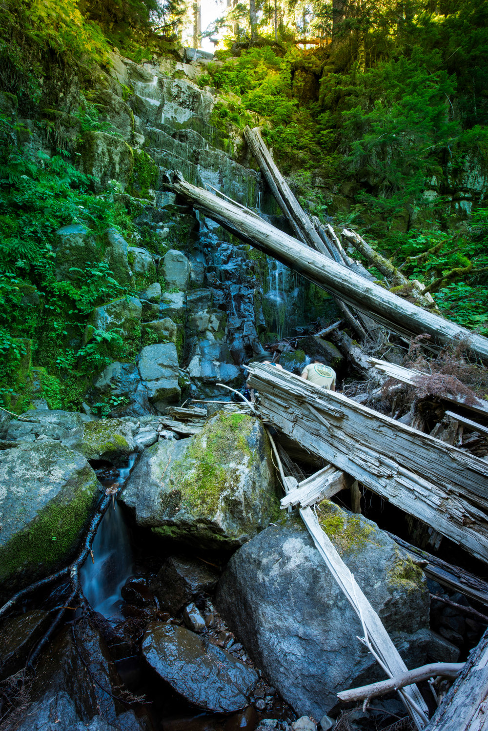 This waterfall is not on any map, website, discussion board, or anywhere on the internet. I plan on going back to take out those logs leaning against it, and then I want to think of a name. But I will not tell anyone where this secret place is, so don't ask.
