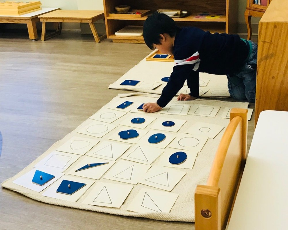 Authentic Montessori - At Twin Cities International Bilingual Montessori, we are passionate about supporting each child in his/her unique path of development through providing authentic Montessori education. We are committed to adhering to the highest Montessori standards set forth by the Association Montessori Internationale (AMI), established by Dr. Maria Montessori in 1929.