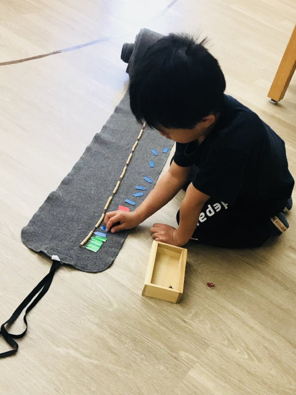 Montessori Morning - Saturday, October 20, 9:30-11:30 a.m.Mathematics and Sensorial