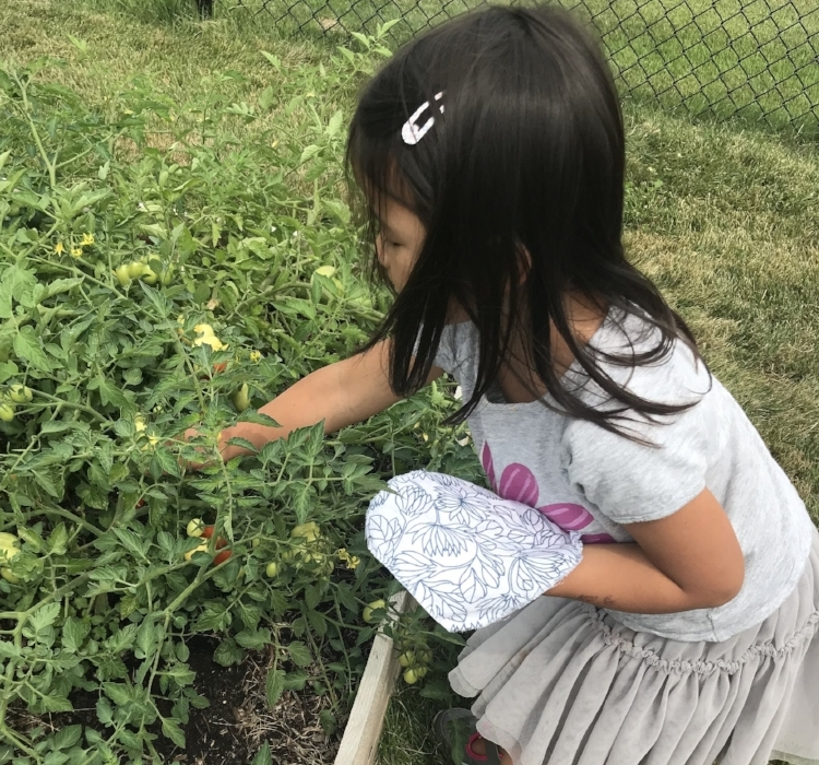 Copy of Child Gardening