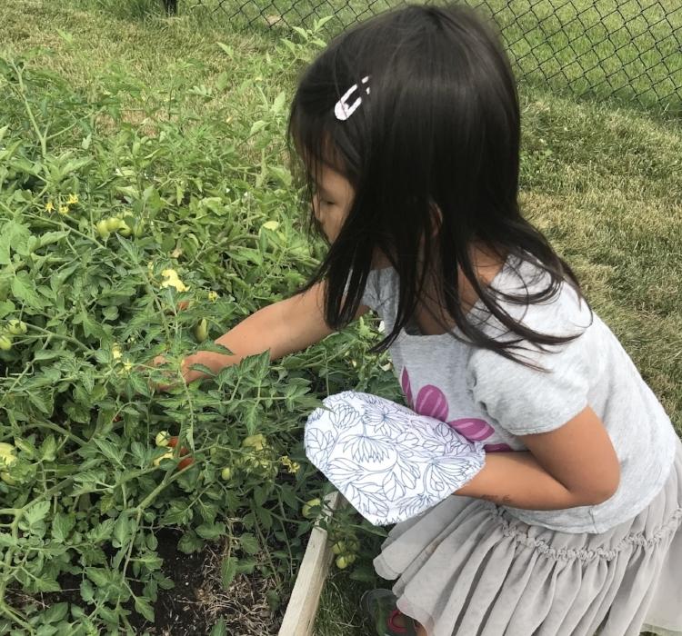 Copy of Child Gardening