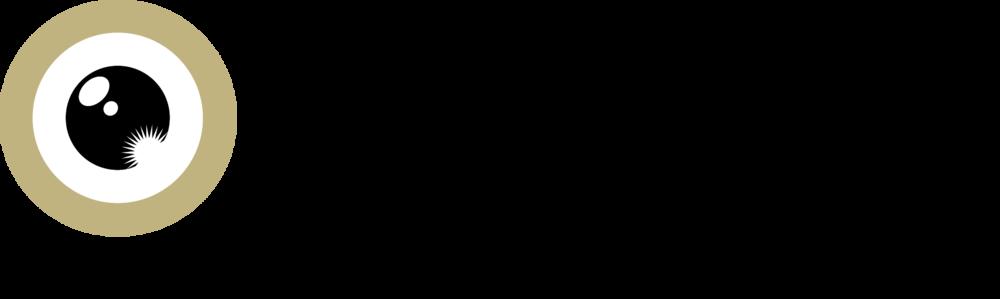 zurich film festival 2017