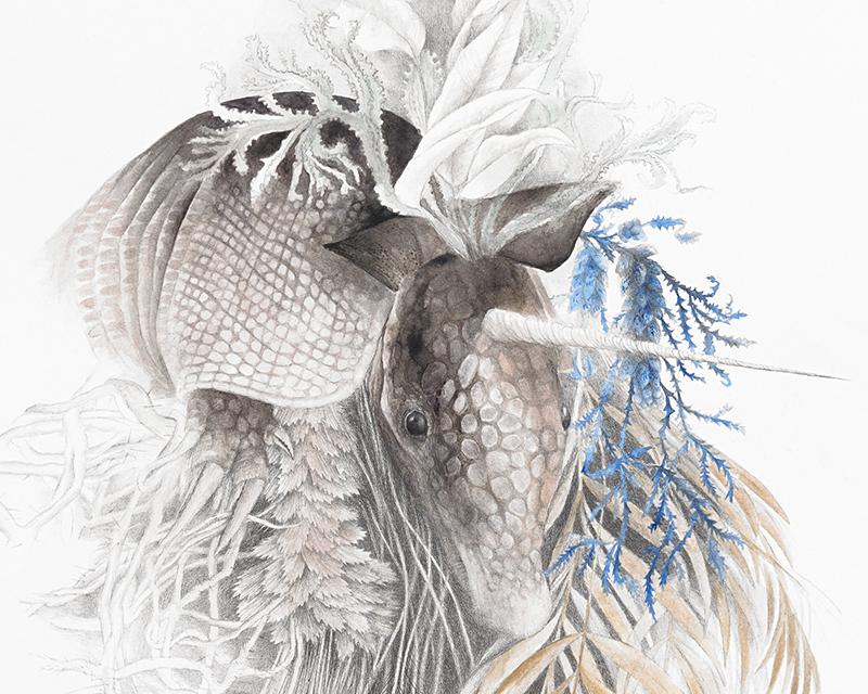 """Herbarium"" (detail) by Maria Trillidou"