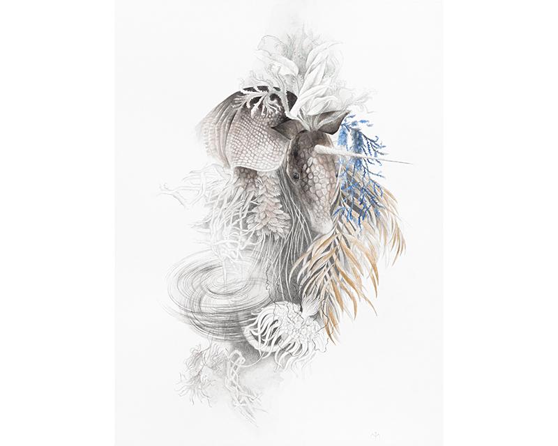 """""""Herbarium"""" by Maria Trillidou"""