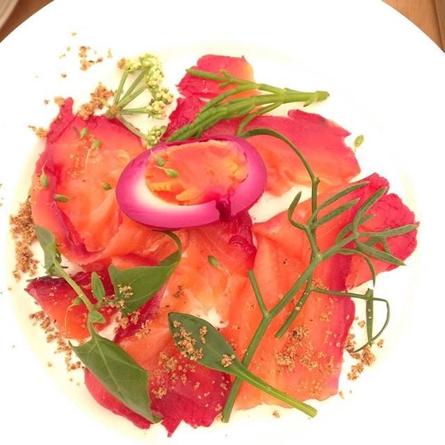 Beetroot cured salmon with beetroot pickled egg,  pickled beetroot, samphire, horseradish & anise crumb