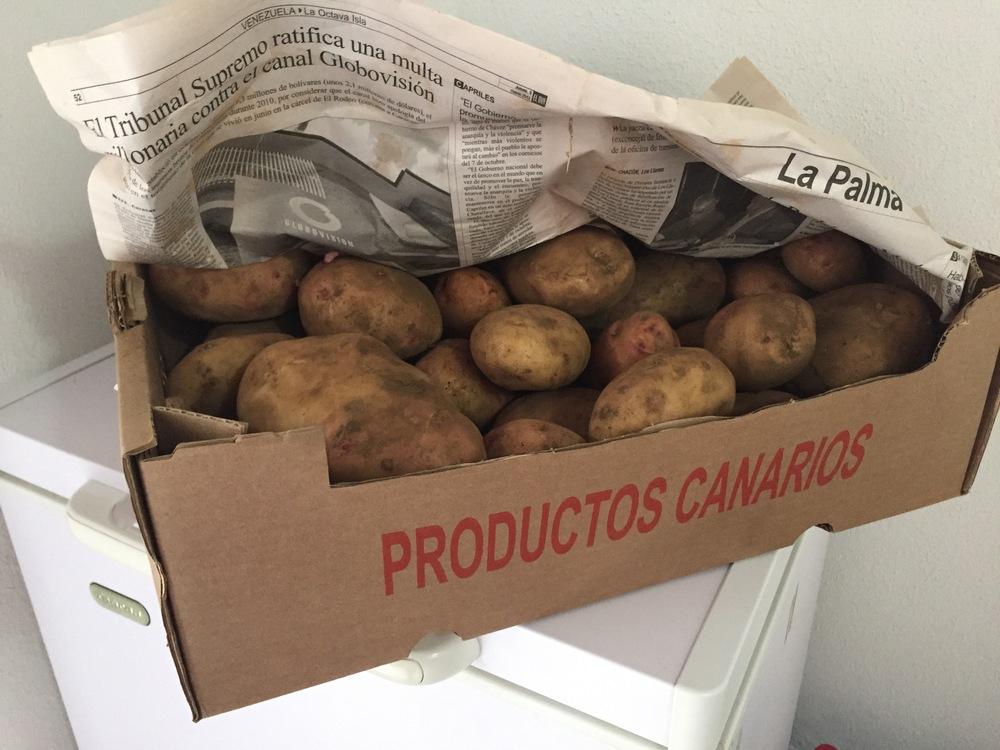 Frische Kartoffeln - Ein Geschenk vom Nachbarn