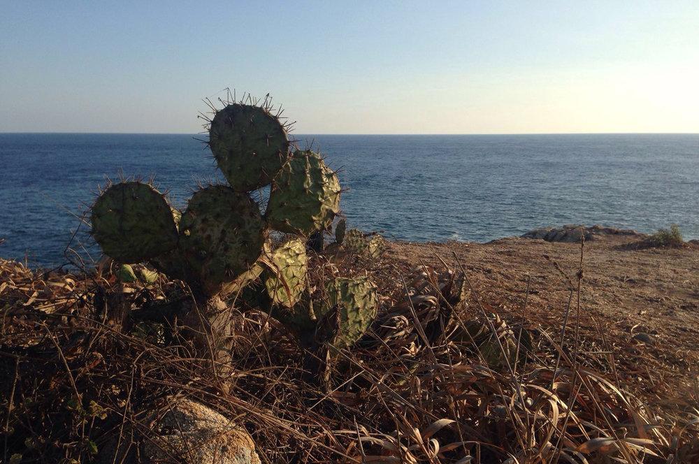 Punta Cometa Mexiko