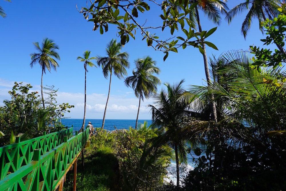 Die Karibikküste Costa Ricas
