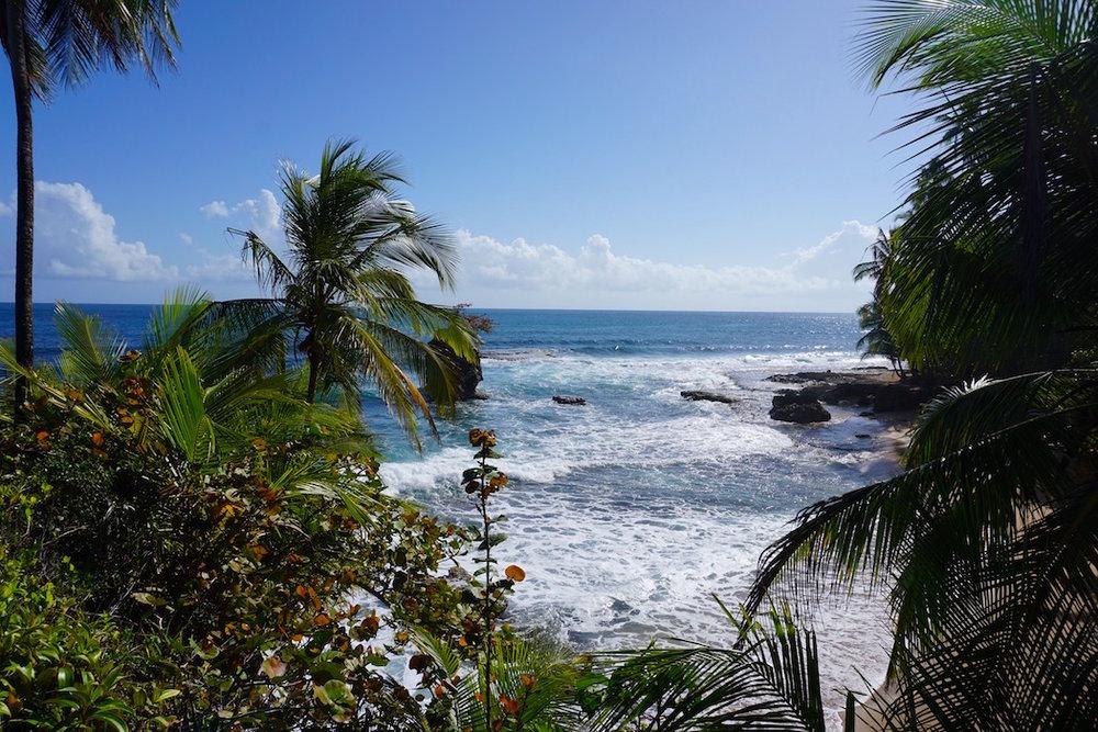 Paradisische Strände an der Karibikküste